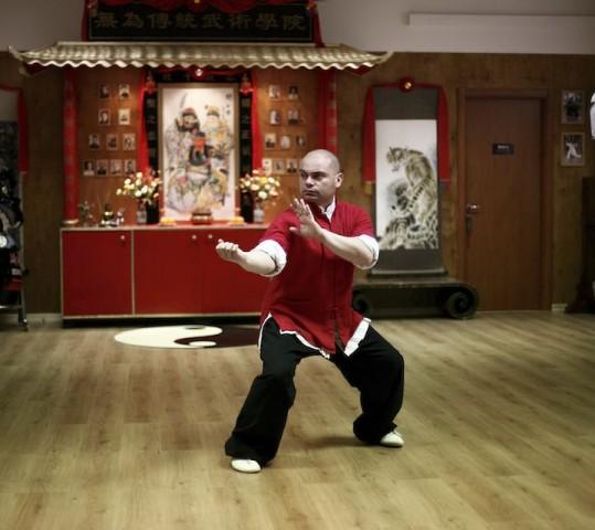 Nuovo video- Buk Sing Choy Lay Fut: Tecniche e applicazioni di combattimento