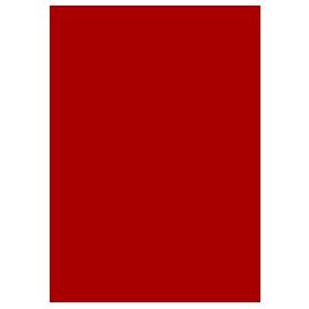 De Nittis Kung Fu